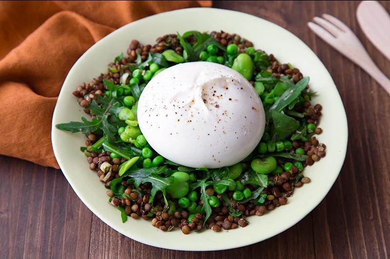 Salade lentilles burrata